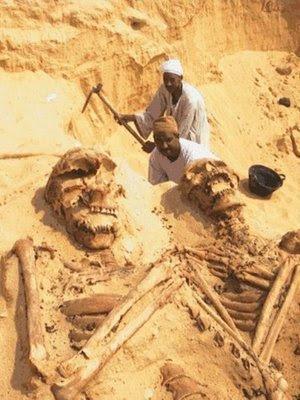 esqueletosgigantes