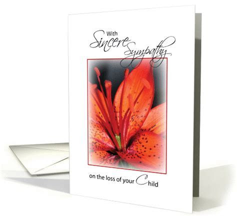Sincerest Sympathy loss of Your Child, Red Flower card