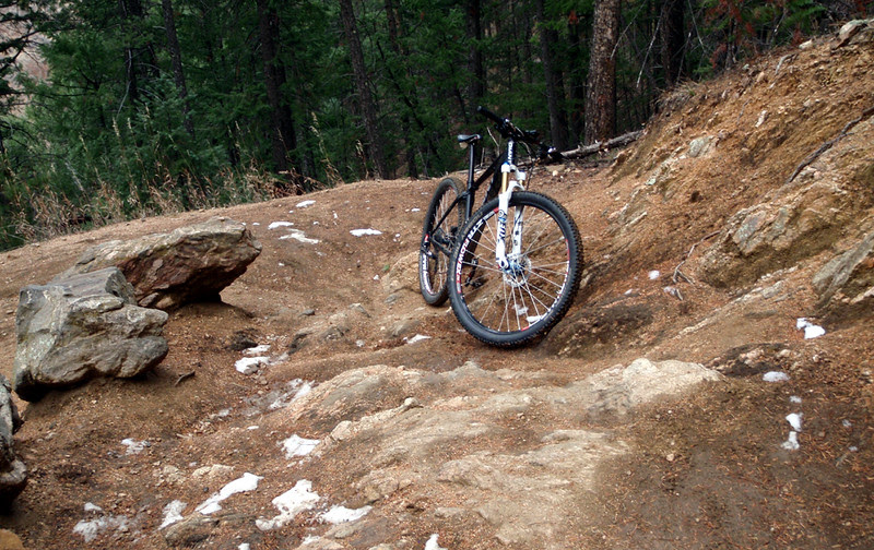 Joint Trail 800 and Colorado Trail