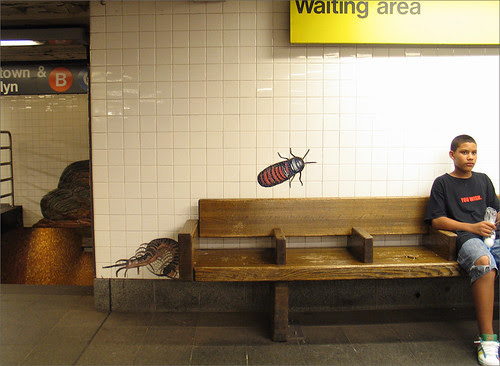 81st Street Subway Station