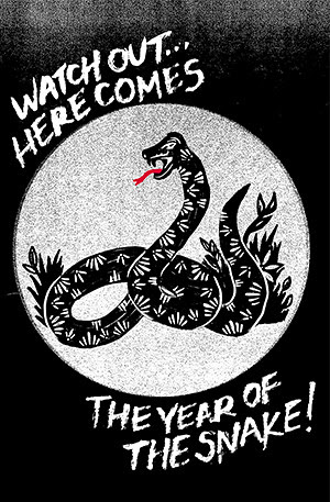 year of the snake by jim leftwich