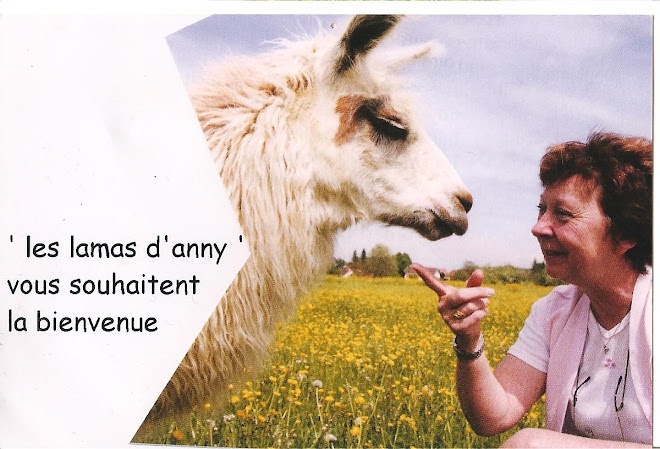 LES LAMAS D ANNY
