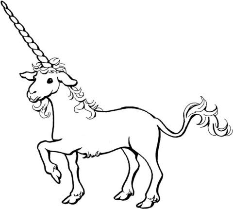 unicorn coloring page  supercoloring