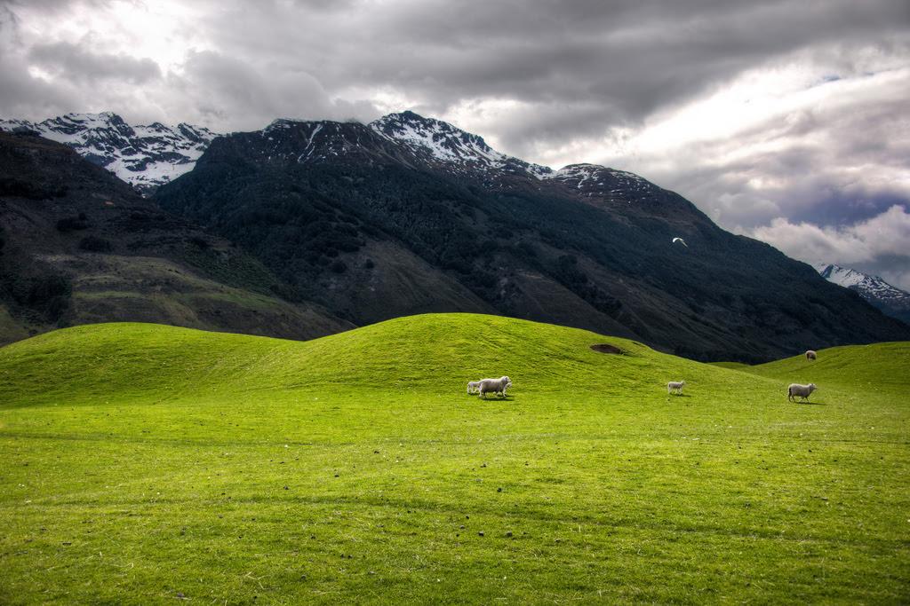 Хоббит места Новая Зеландия