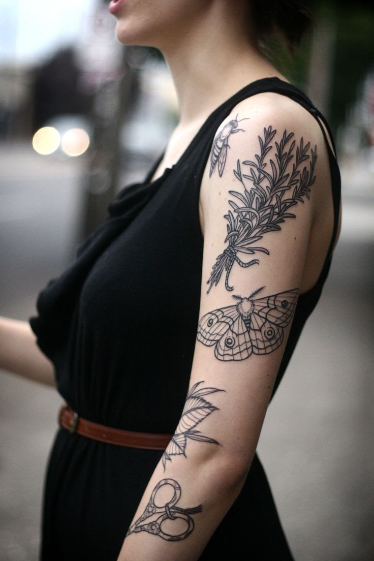 Tattoo Ideas Free Tattoo Ideas Bee And Butterfly
