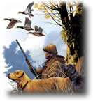Hunting license tax