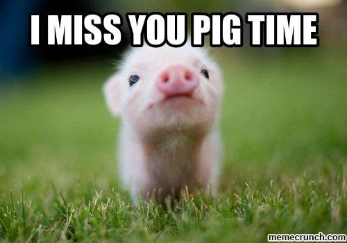 I Miss You Pig Time Pictures Photos And Images For Facebook