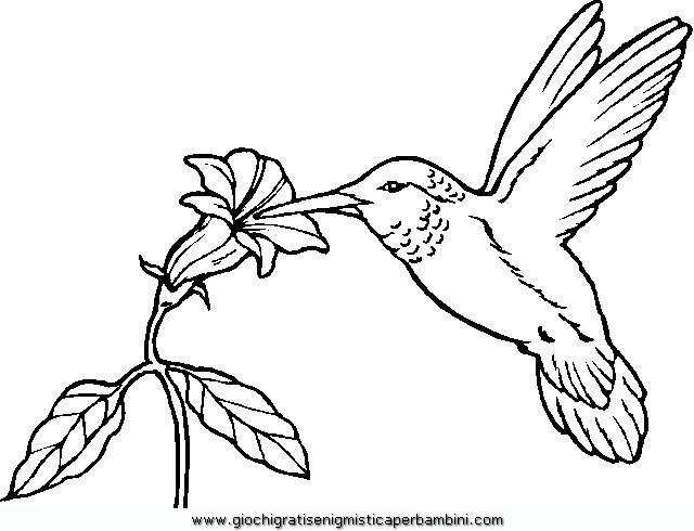 Disegni Uccelli Da Stampare Stampae Colorare