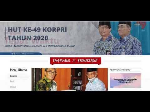 Progres penetapan NIP CPNS Tahun Anggaran 2019 (Keadaan 11-12-2020)