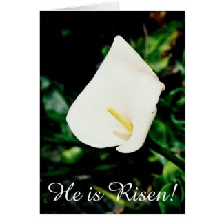 Easter Calla Lily Greeting Card