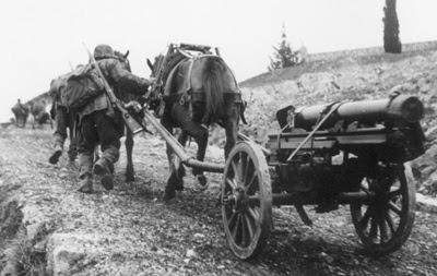 SS-Karstwehr-Bataillons, Artillerie-Ausbildung