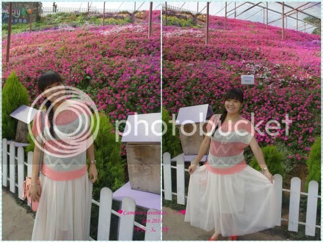 photo 21_zpsf10cb80a.jpg