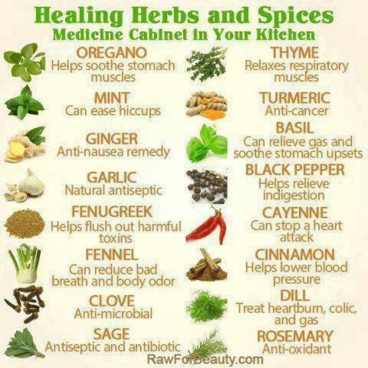 Common herbs for health