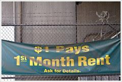 1st Month Rent