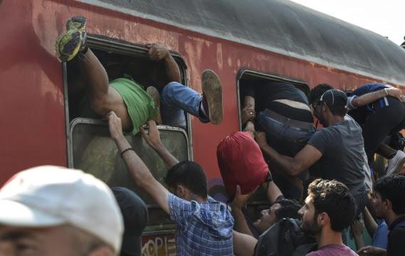 Emigranci z Bliskiego Wschodu i Afryki próbują dostać się do pociągu jadącego z Macedonii do Serbii