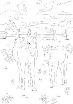 ausmalbilder ausdrucken pferde - kostenlose malvorlagen ideen