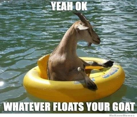 Floating Goat Funny Pictures Quotes Pics Photos Images Videos