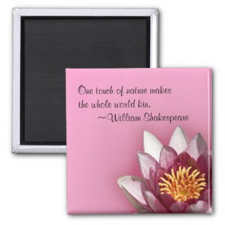 Pink Water Lily magnet