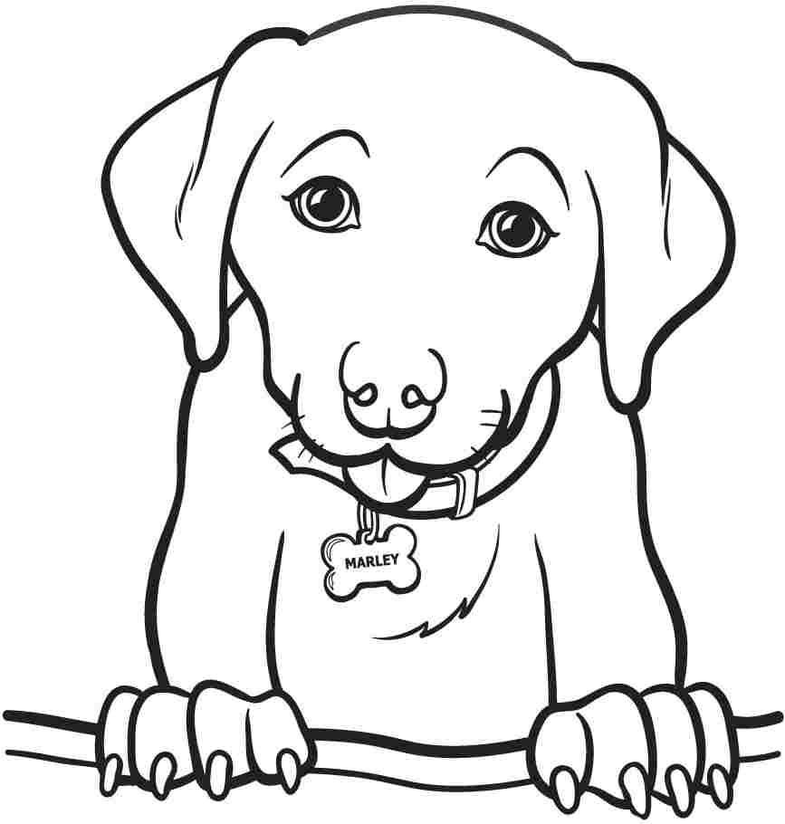 Dogs - Free printable Coloring pages for kids | 910x867