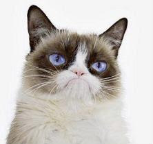 grumpcat