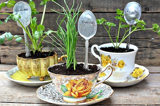 Plant your herbs in decorative tea cups! Place them on your balcony for some decoration as well. You'll probably find some neighbors who mimic this idea!