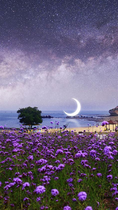 wallpaper surreal moon scenery purple flowers seascape beach  nature