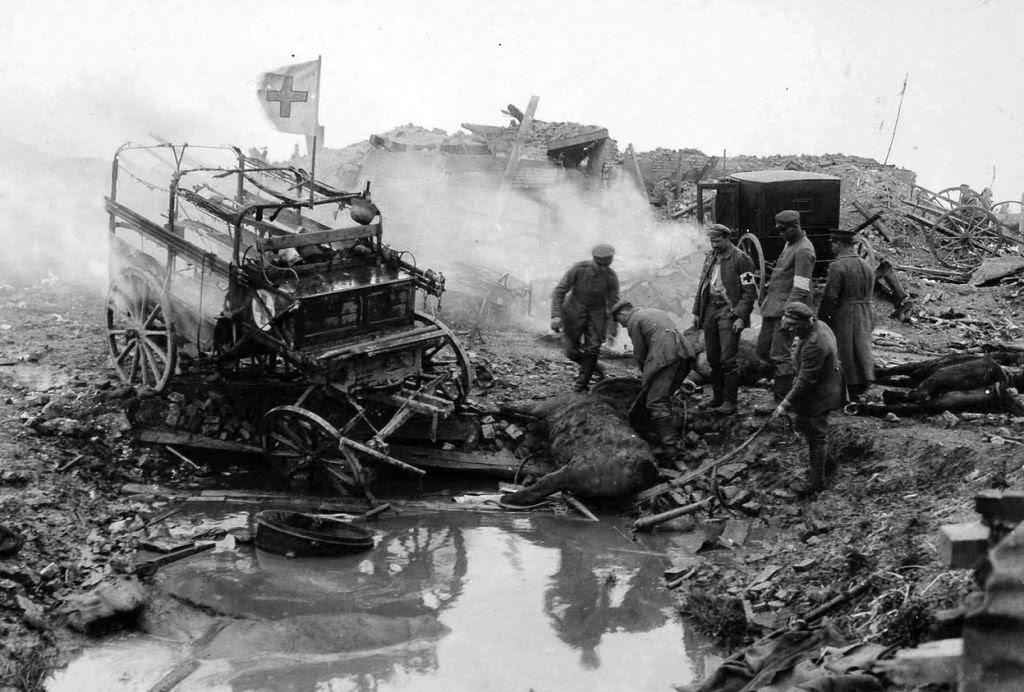Os animais também lutaram na Primeira Guerra Mundial 08