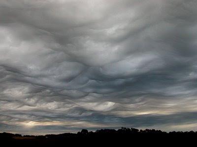 Tasmania, Australia Foto de Gary McArthur