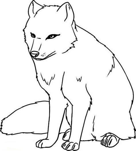 arctic wolf coloring  arctic wolf coloring