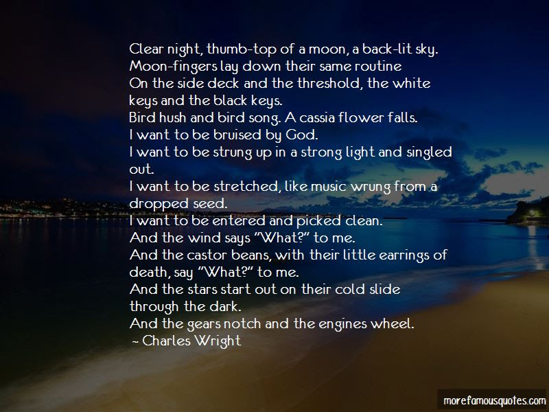 Night Sky Stars Quotes Top 41 Quotes About Night Sky Stars From