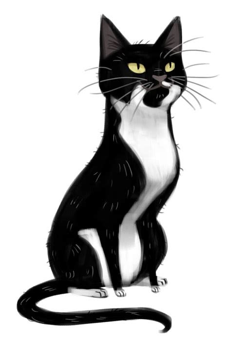 minacat images cat drawing hd wallpaper  background