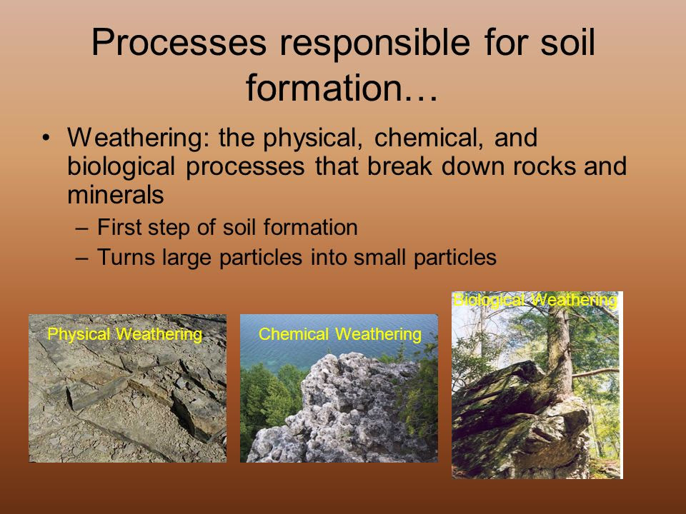 68 TUTORIAL : HOW PROCESS OF SOIL FORMATION PDF VIDEO DOC ...