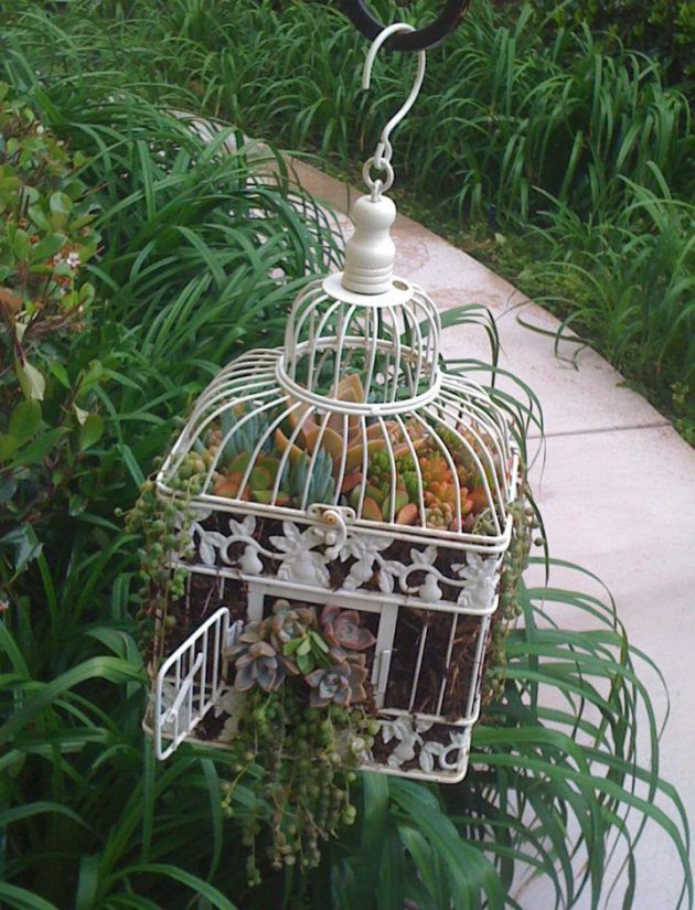 Top 20 Surprisingly Genius Ideas To Repurpose Birdcages Into Planters