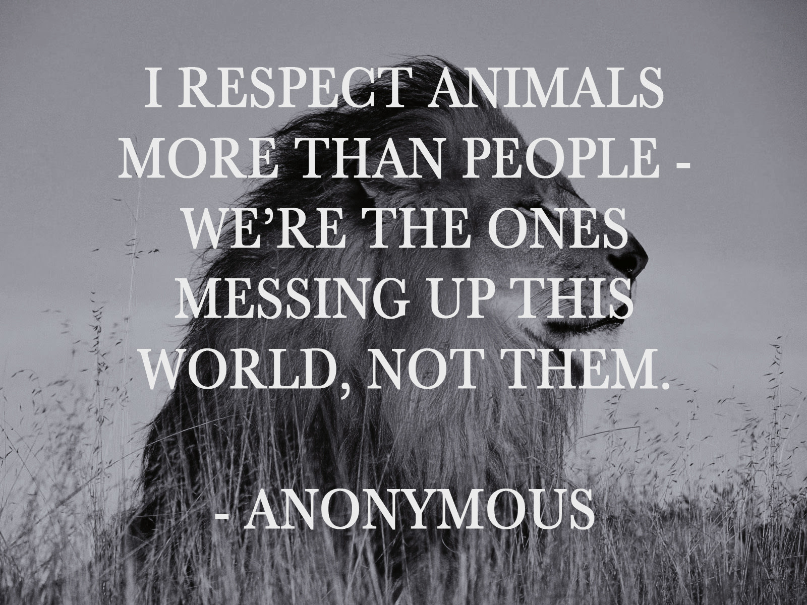 Quotes About Animal 563 Quotes