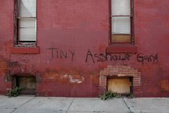tiny asshole gang_1 web