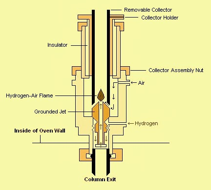 Flame Ionization Detector