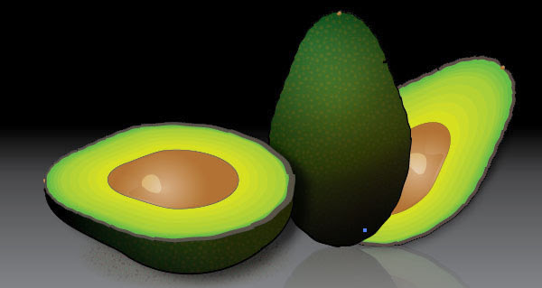 Create a Stylized Avocado