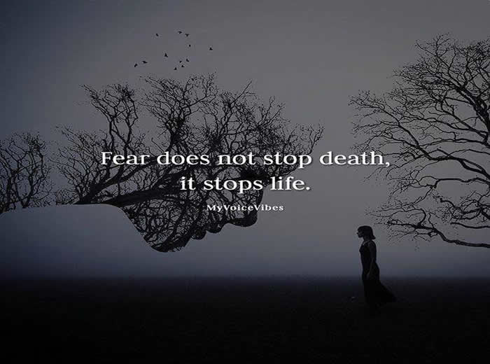 Death Is Certain Life Is Uncertainquotesmessages Inspirational