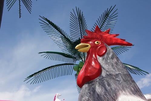 chicken palm