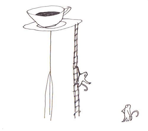 monkeys coffee ladder