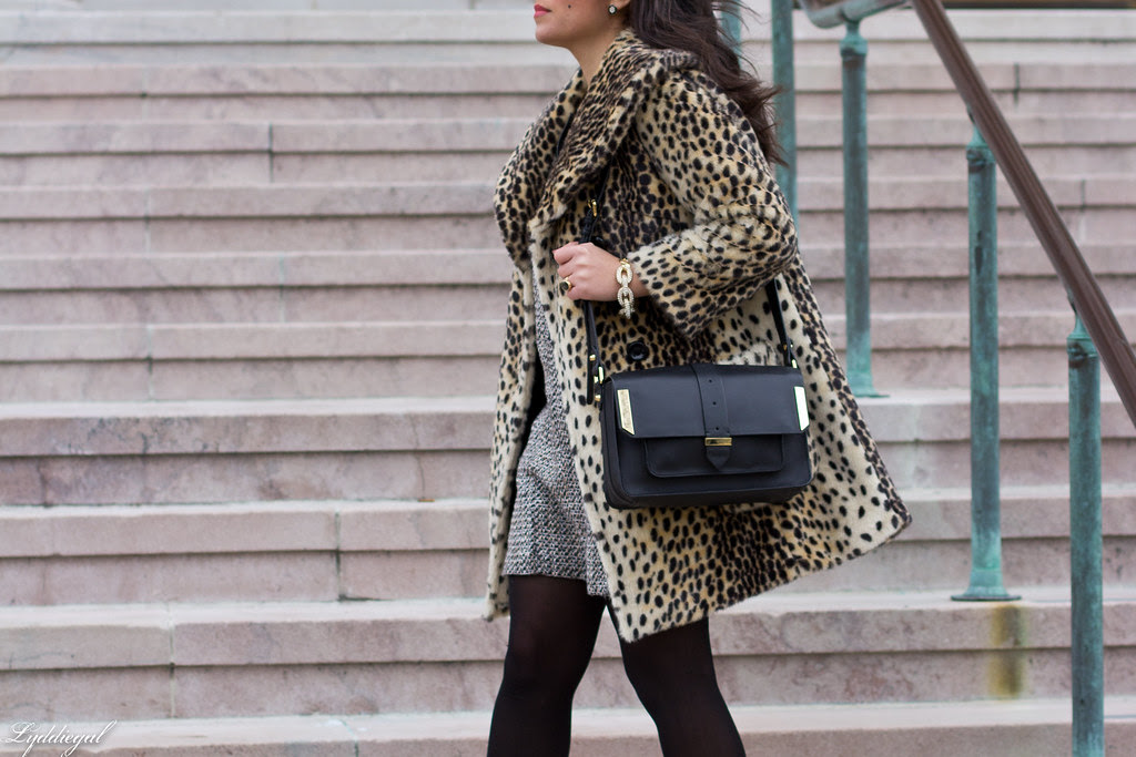 leopard and tweed.jpg