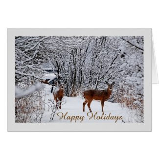 Happy Holidays Whitetail Deer Greeting Card