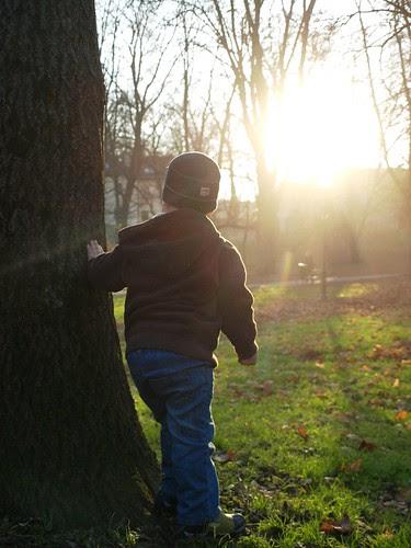 nov 15/30-{let the sun shine on me....}