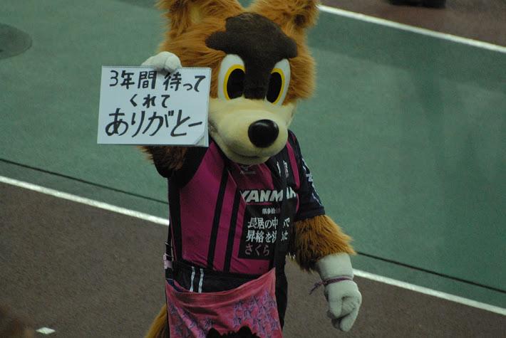 DSC_810001.jpg
