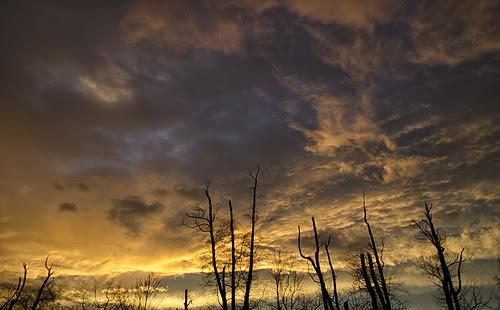 11/22 sunset by Josh Beasley
