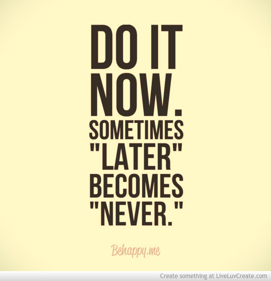 Quotes About Do It Now 406 Quotes