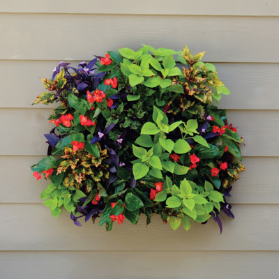 Living Wall Planter-Pamela Crawford Wall Side Planter-Living Walls