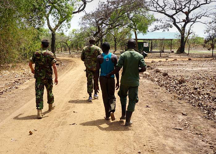 Alleged poacher caught in Garamba