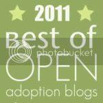 Best of Open Adoption Blogs 2011