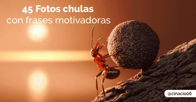 45 Fotos Bonitas Con Frases Motivadoras De Superacion Personal